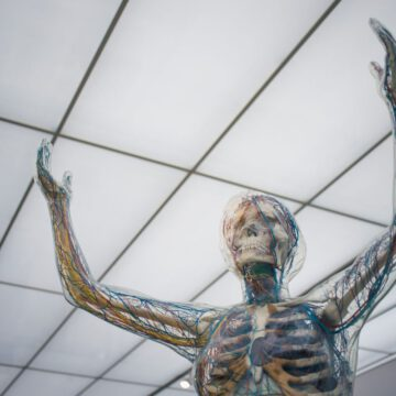 17 krát zajímavosti o lidském těle